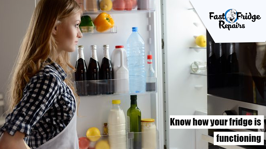 Know How Your Fridge is Functioning