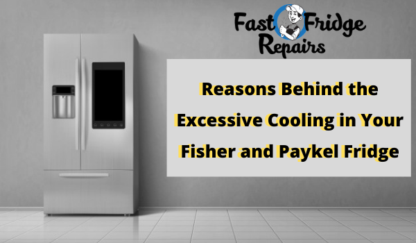 Fisher and Paykel Fridge Repairs