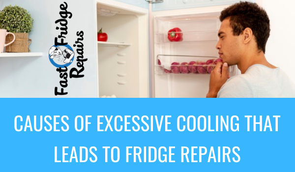 Professional Fridge Repairs